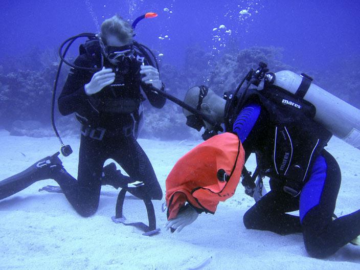 PADI Open Water Dive Course Perth Scuba Perth Scuba